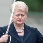 Valstiečių, konservatnikų ir masiulininkų koalicija: D.Grybauskaitės rožinis sapnas, kuris gali išsipildyti
